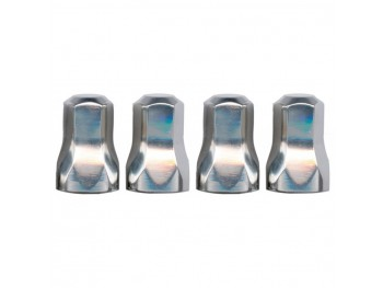 Stainless Air Cleaner Nuts